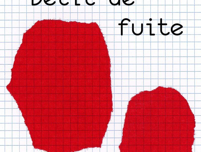 Sélection Prix ados 2013. Délit de fuite, Christophe Léon, La Joie de lire